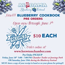 Blueberry Cookbook 0005